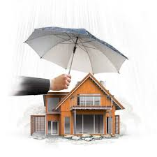 Citizens Property Insurance